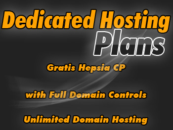 Discounted dedicated servers hosting service